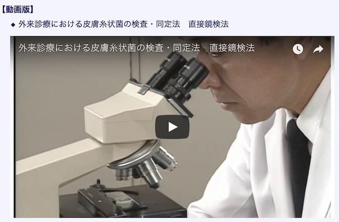 真菌検査勉強会3