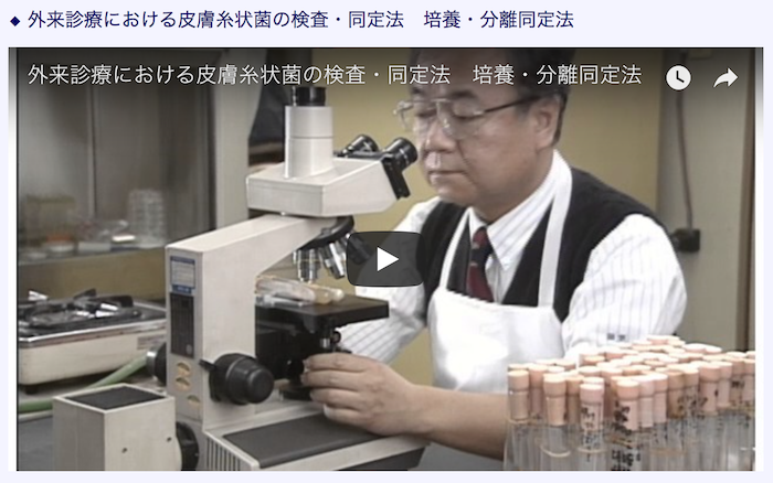 真菌検査勉強会4
